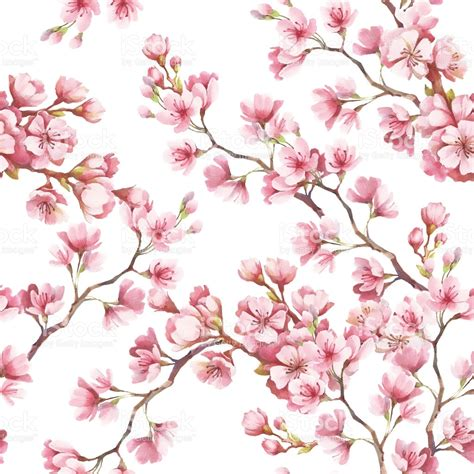 cherry pattern vector art seamless pattern with cherry blossoms watercolor