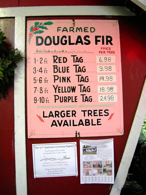 cost of xmax tree in usa file s tree farm doug fir prices jpg wikimedia commons