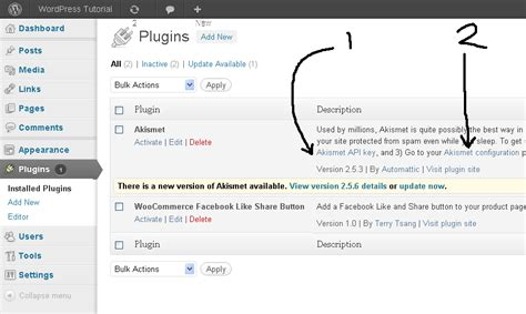 tutorial konfigurasi wordpress konfigurasi akismet dengan free api key wordpress