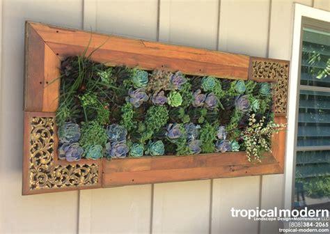 Kahala Vertical Succulent Garden Tropical Patio Succulent Wall Garden For Sale