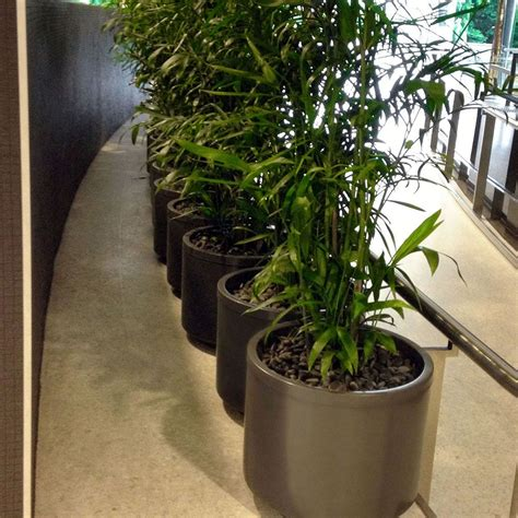 Lechuza Planters Australia by Container Connectionjardiniere