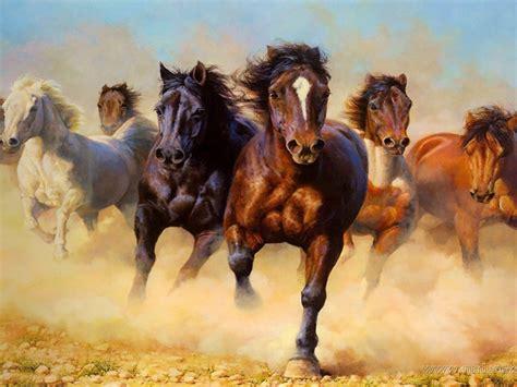 animals wild horses galloping hd wallpaper
