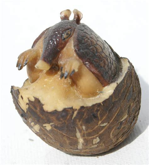 tagua nut armadillo figurine carving of tagua nut of panama