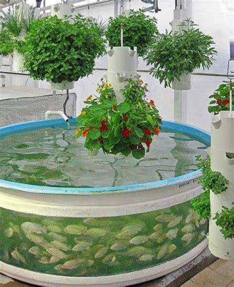 1000 Images About Aquaponics And Hydroponics On Pinterest Aquaponic Vegetable Garden