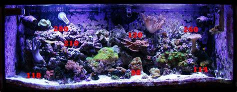 Lu Led Untuk Aquarium cara bikin lu untuk aquascape atau aquarium warna biru