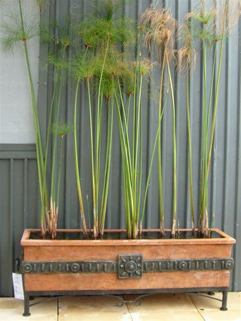 Mission Style Planters by Potanico Pots