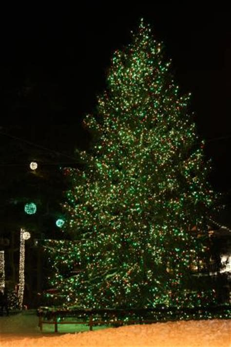 ll bean christmas tree picture of l l bean factory