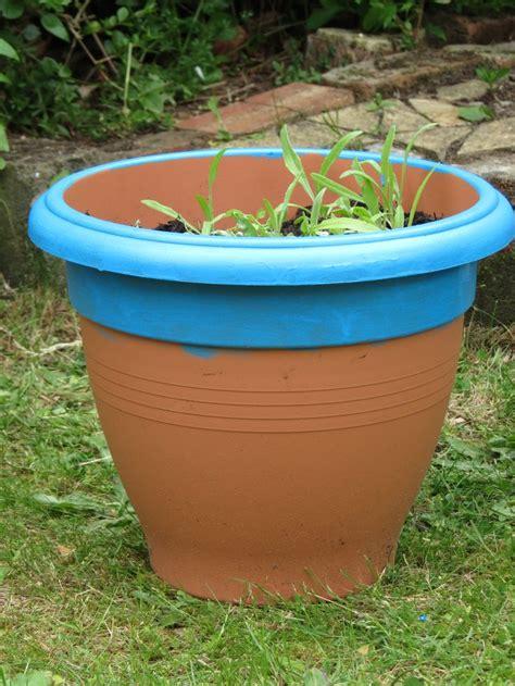 chalkboard paint for plastic 25 best ideas about plastic plant pots on