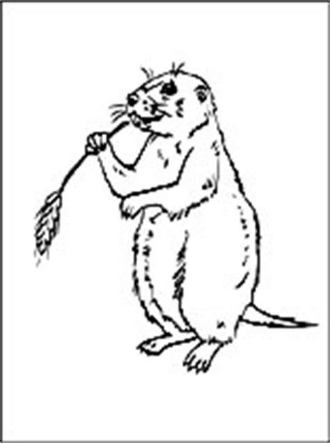 coloring pictures of prairie dogs dibujo de perritos de la pradera para colorear dibujos
