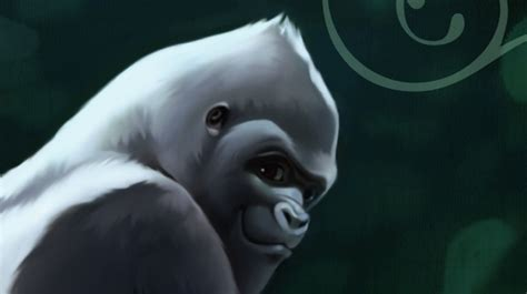 the one only a novel meet ivan the gorilla who lived in a shopping mall npr