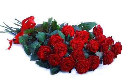 fiori a gambo lungo mazzo di rosse a gambo lungo consegna fiori lecce