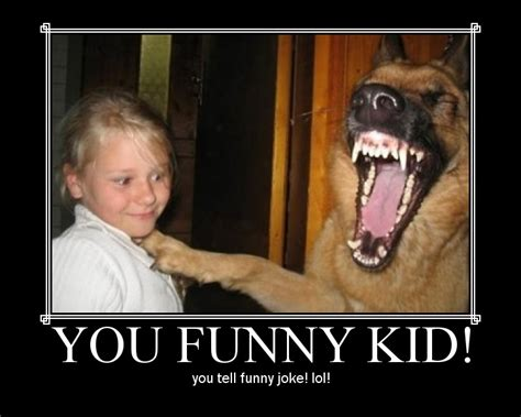 Funny dog pictures with quotes, funny dog picture, puppy dog pictures   Funny Pictures