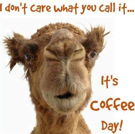 wednesday coffee memes images pics     week