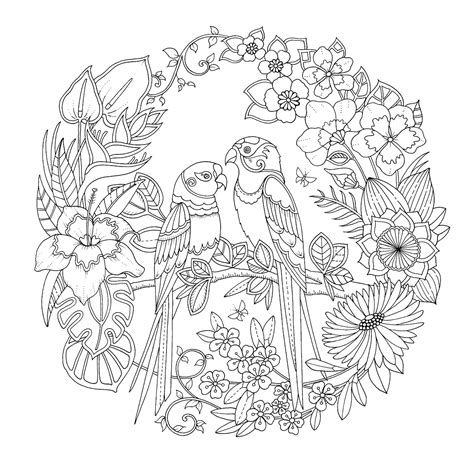 libro inky mandalas themed mandalas magical jungle an inky expedition colouring book colouring books floral coloring books
