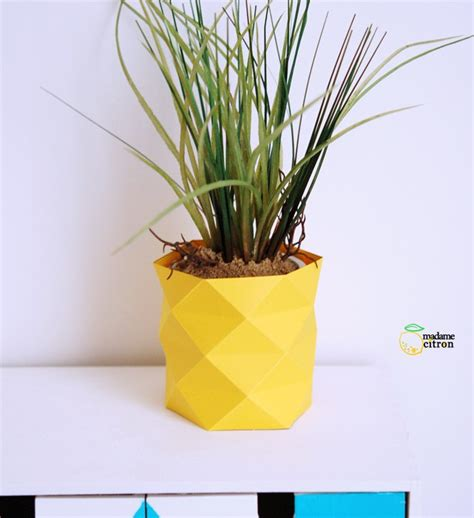 Pineapple Planter by Pineapples 16 Themed Projects Just For You Best