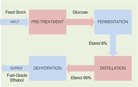 biopremium adalah wanda environmental engineer bioetanol