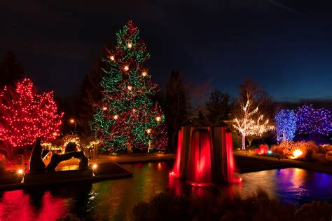 Denver Botanic Gardens Lights Blossoms Of Light One Million Lights Illuminating The Denver Botanic Gardens During The