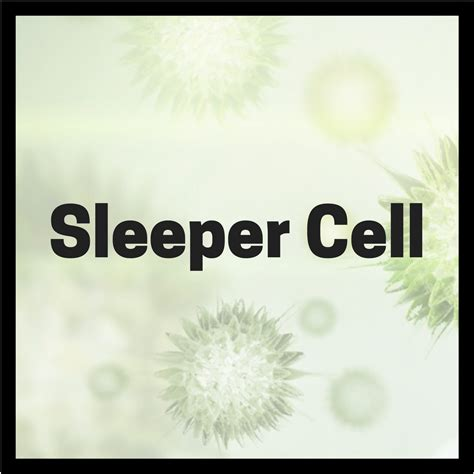 Cell Sleeper by Lyme Sci Do Sleeper Cells Hold Key To Quot Turning Quot Borrelia