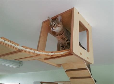 cat wall furniture incredibly elaborate wall furniture designed to be a