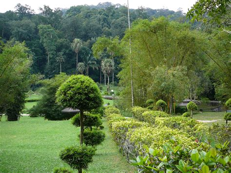 Top 10 Things To See Do In Georgetown Penang Penang Botanical Garden
