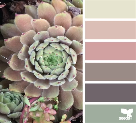 in nature archives page 77 of 89 design seeds