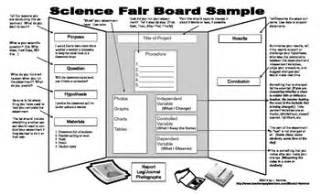 science fair poster board template science fair display board sle tpt