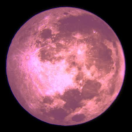 Moon Pink keeping your in all the s pink moon
