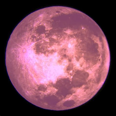 pink moon keeping your head in all the game s full pink moon