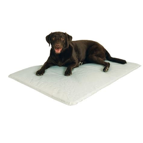 cooling dog bed k h pet products cool bed iii large gray cooling dog bed