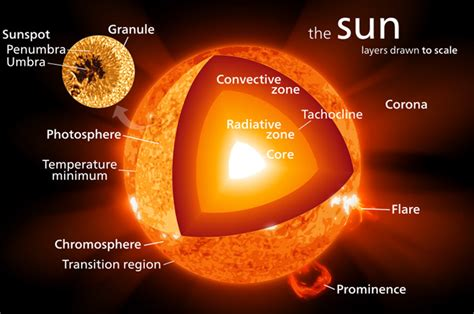 the of the sun 1 how the sun works an observer s guide astronomyconnect
