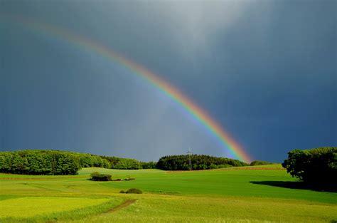 Palmer Weiss by Kostenloses Foto Regenbogen Wetter Natur Stimmung