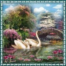 cuadros de cisnes resultado de imagen para cuadros pintados al oleo con