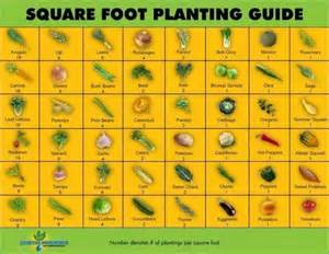 square foot gardening plan demonstration garden