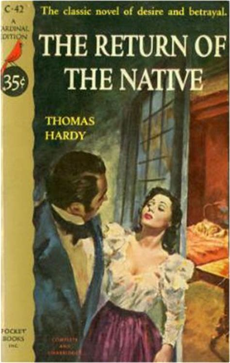 themes in the book native son the return of the native novelguide