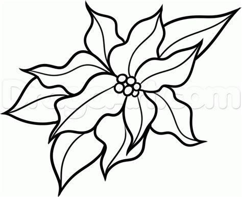 doodle draw flower drawing pictures archives pencil drawing