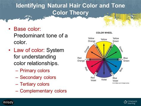 hair color theory milady standard cosmetology ppt