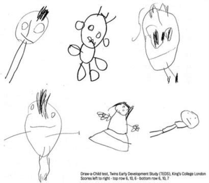 Drawing 2 Year by Children S Drawings Indicate Later Intelligence Study