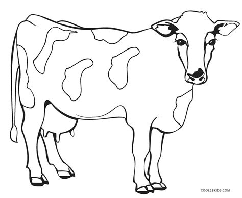 Cow Color Page free printable cow coloring pages for cool2bkids