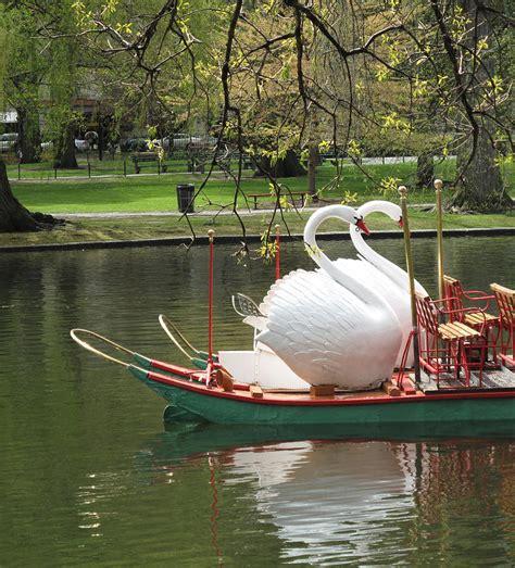 swan boats boston video boston swan boats photograph by barbara mcdevitt