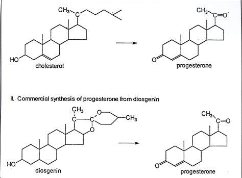 Suplemen Estrogen Nat 252 Rliche Hormone Naturheilkundliche Praxis Dr Dr Med