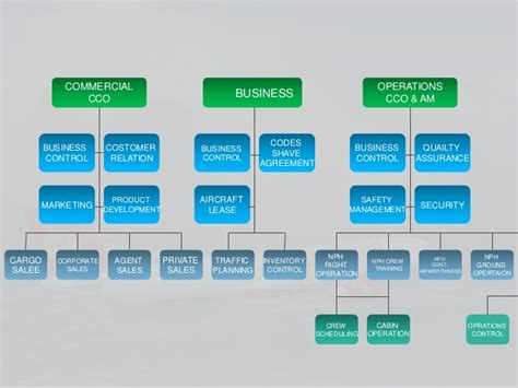 organisational structure of kingfisher airlines