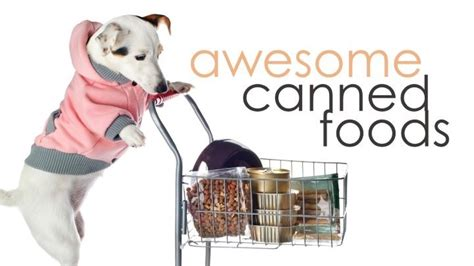 best canned puppy food what is the best canned food herepup