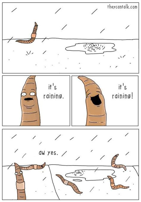 they can talk a collection of comics about animals if animals could talk 10 pics bored panda