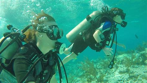 how to dive and scuba diving