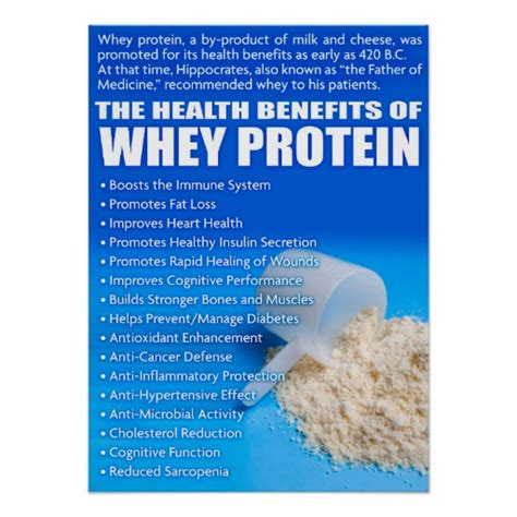 protein health benefits the health benefits of whey protein poster zazzle