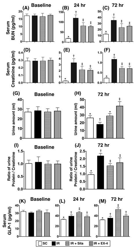 Serum Glucogen serum levels of blood urea nitrogen bun creatinine and glucagon like