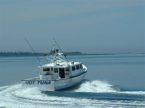 dixon boats dixon s marine group 2000 inc lower woods harbour ns