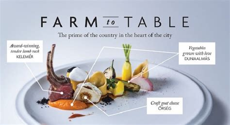 food concept  corinthia hotel budapest news
