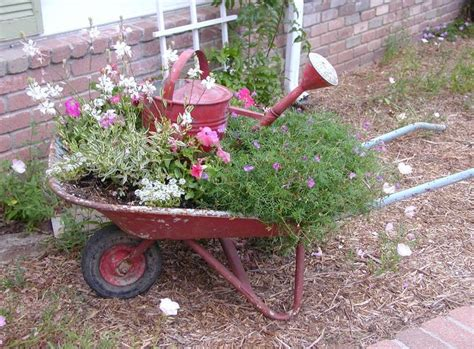 Wheelbarrow Planter Ideas by Best 20 Wheelbarrow Planter Ideas On