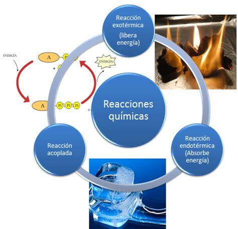 reacciones exotermicas y endotermicas biologia 1 cibertareas biolog 237 a la ciencia de la vida metabolismo de los seres